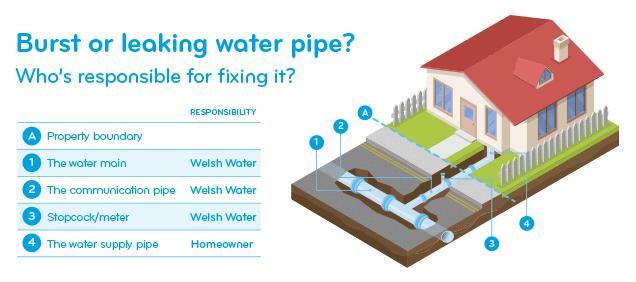 Burst or leaking water pipe