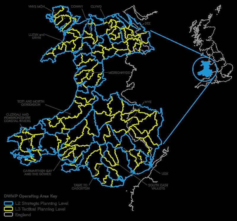 DWMP map